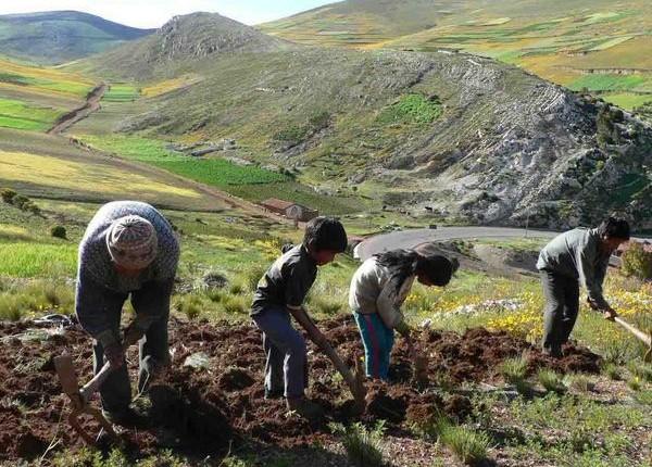 051214_peru_dia-del-campesino_NyaReyes